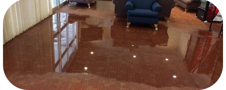 Expert Flood Damage Restoration Midland